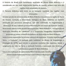 layoutApresentação